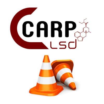 CARP LSD EN CONSTRUCTION