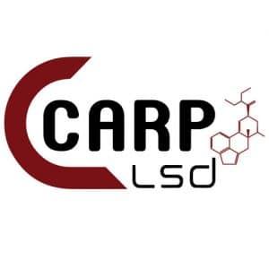 TeamCarpLsd