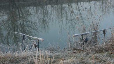 Photo de La rivière en hiver. Le bon plan pour dérouler !