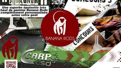 Photo de A gagner: Une épuisette haut de gamme Banana Rods (Terminé)