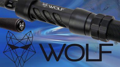Photo de Wolf X3K Series