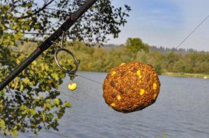 Jolie pelote mon pote ! | CARP LSD