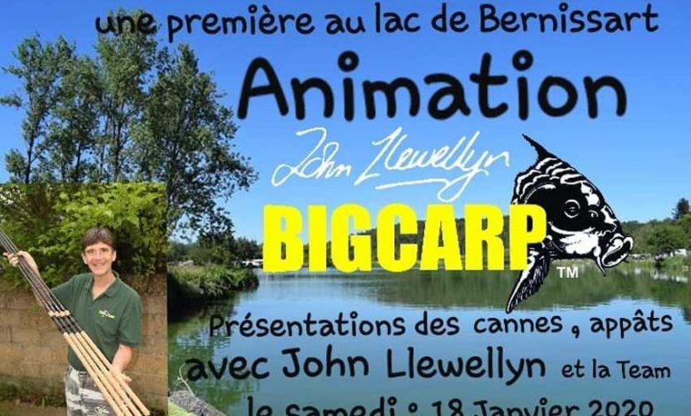BIG CARP | CARP LSD