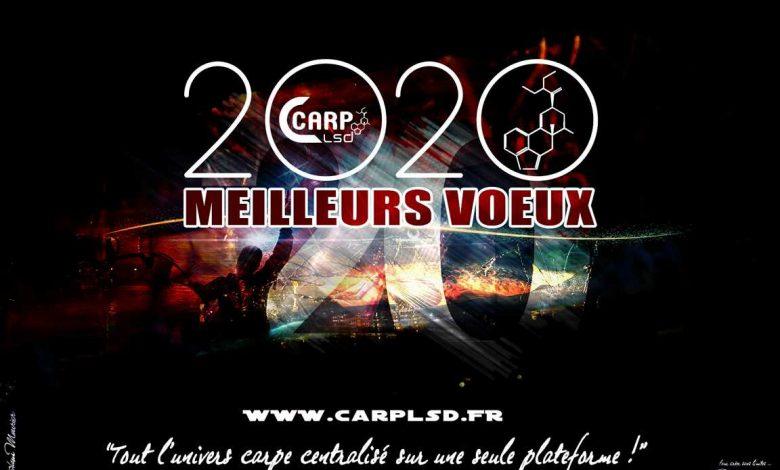 MEILLEURS VOEUX CARP LSD