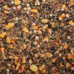 Un mélange attractif de graines pour bien débuter l'année!