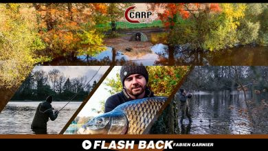 Photo de FLASH BACK CARP