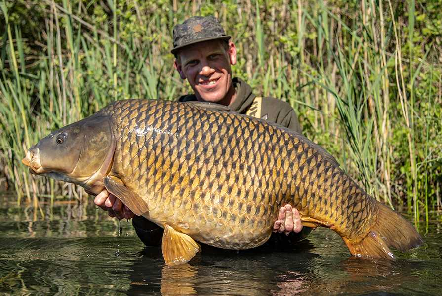 ALAN BLAIR | CARP LSD