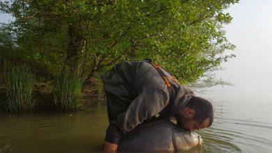 Photo de Mon montage pour la rivière