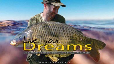 Photo de Live your dreams