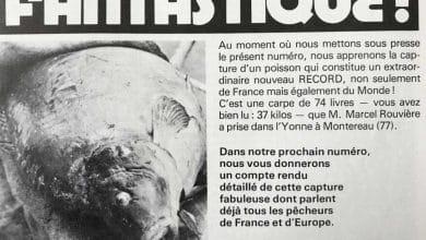 Photo de La carpe record qui a marqué l'histoire de la pêche en France