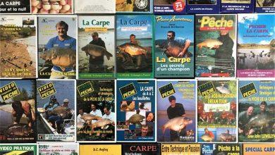 Photo de Les premières vidéos de pêche à la carpe