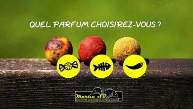 Photo de Martin SB – Quel parfum choisirez-vous?