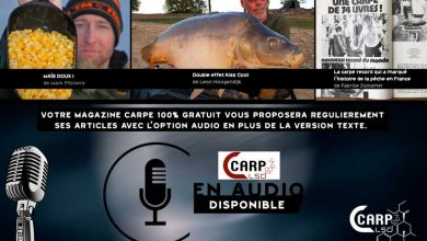 Photo de LES ARTICLES CARP LSD EN MODE AUDIO
