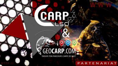 Photo de CARP LSD & GEOCARP signent un partenariat!